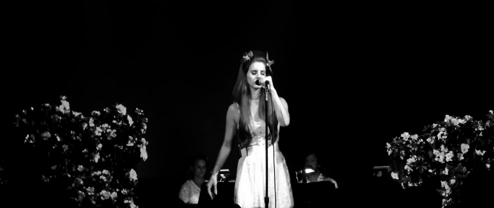 Lana Del Rey Avoids Kidnapping At Concert