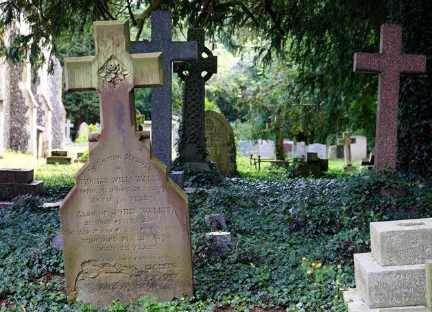 Minneapolis's Lakewood Cemetery Plans Concert Series