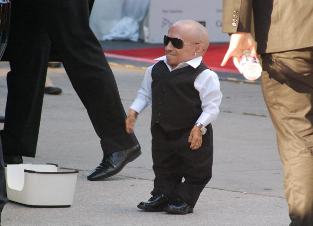 Actor Verne Troyer Dies