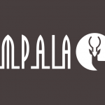 IMPALA Launches Diversity And Inclusion Training Program For Members