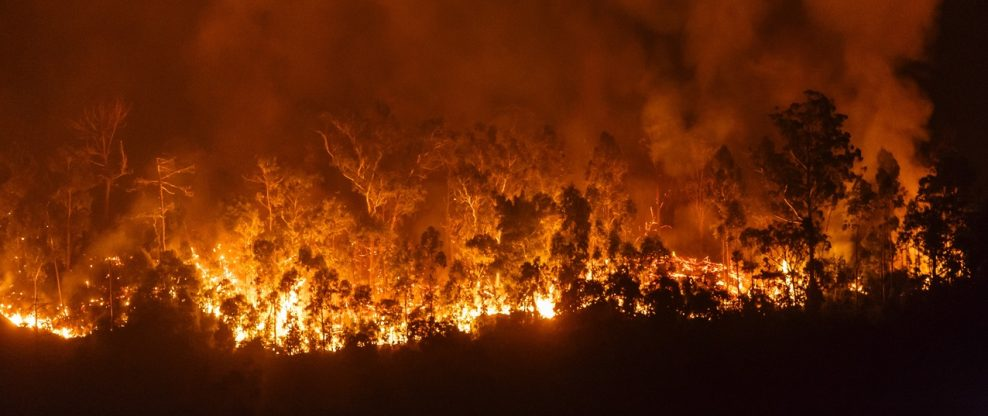 Wildfires Shutter Thousand Oaks PAC, Force Evacuation Of Malibu's Celebrities