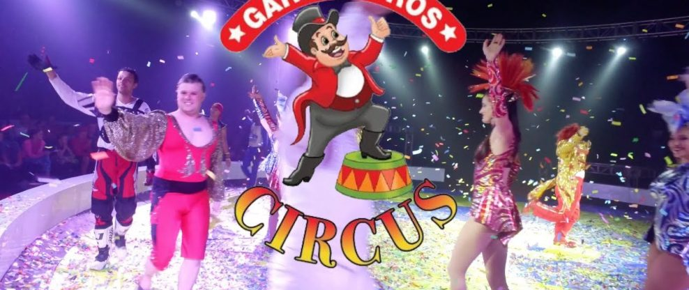 Acrobat Falls During Garden Bros Circus Show (Video)