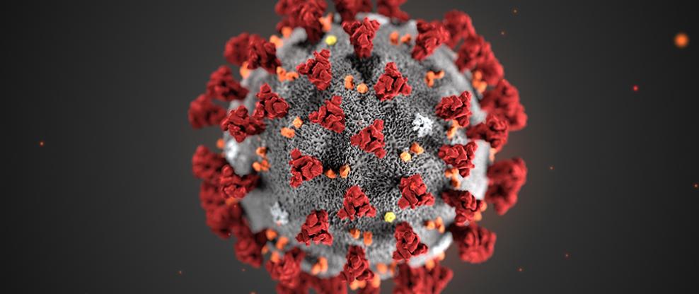 Novel nCov Coronavirus